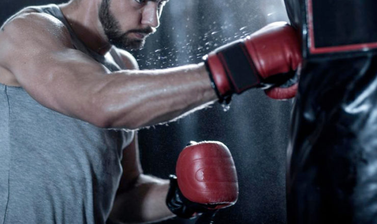 5 Best Boxing Gloves of 2021 from the Top Brands