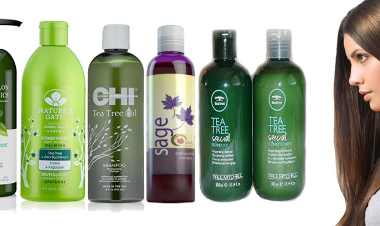 Best Tea Tree Shampoos of 2020 for Itchy Scalp and Dandruff