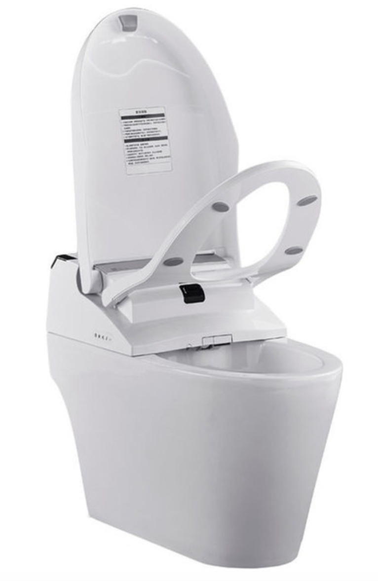 ProStock Electronic Bidet With Integrated Toilet