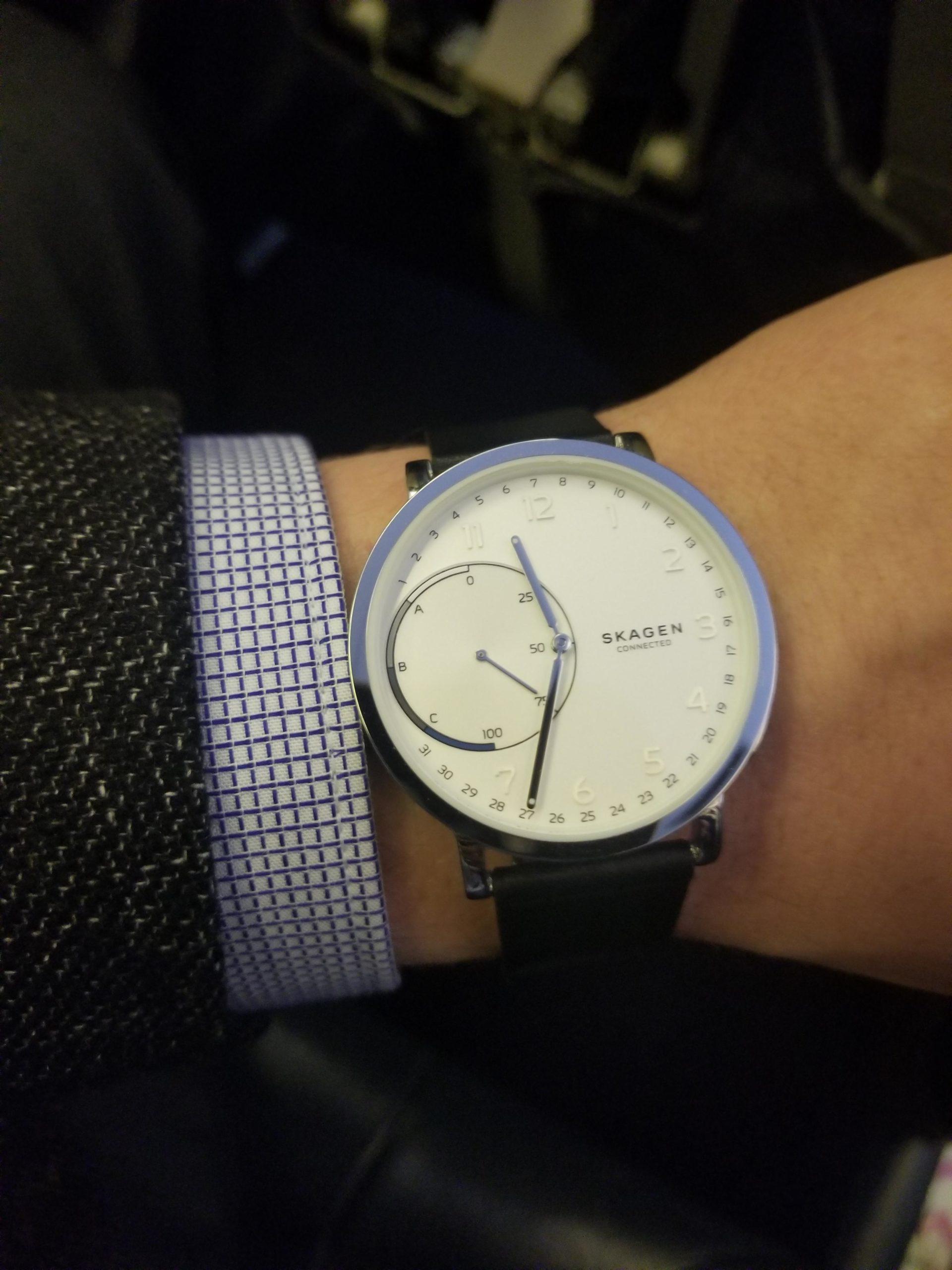 Skagen Watches 1