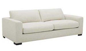 Stone & Beam Westview Sofa